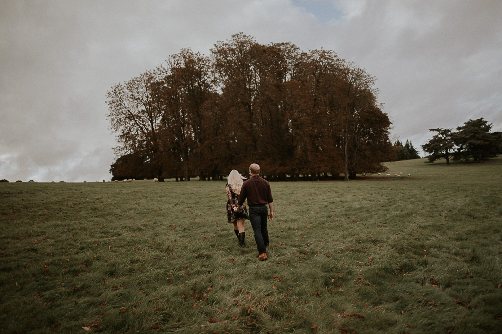 A Windy engagement in Oxford